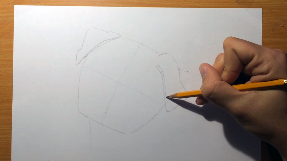 how to draw a pug face guidelines