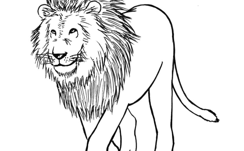 How to Draw a Lion: Step by Step