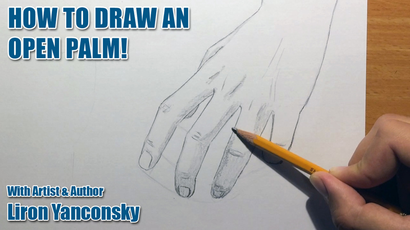 How to Draw an Open Hand / Palm!